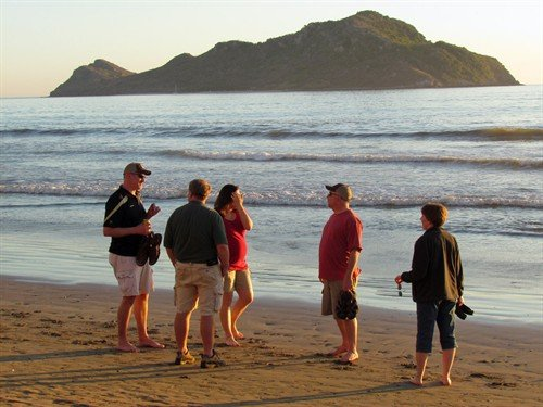 mazatlan%20mexico%20duck%20hunting%20beach%205953_500x375