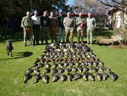 africa duck hunting 1000139_250x188